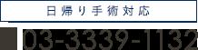Tel.03-3339-1132